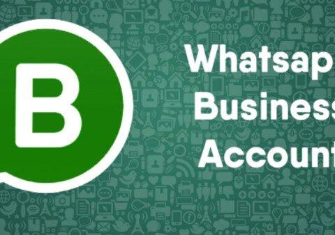how to setup a whatsapp business account